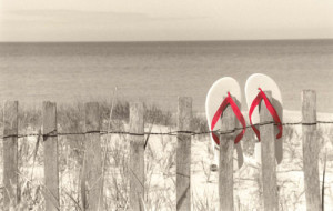 Summer_s_here__red (1)